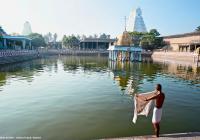 مؤمن ينهي طقوس الاستحمام  استعدادًا للذهاب لتعبّد ﭬﯿﺸﻨﻮ، (معبد دﻳﭭراج سوامي - تاميل نادو- الهند). © Éditions Agora - Guiziou Franck/hemis.fr