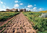 آثار معبد في سيلينوس المدينة اليونانيّة القديمة، (صقلّية). © Éditions Agora - Frilet Patrick/hemis.fr